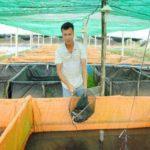 Bỏ bằng kỹ sư công nghệ thông tin về nước… nuôi lươn