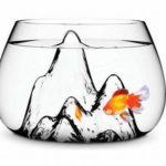 Bài học bán bể cá – Câu chuyện hay về bí quyết kinh doanh