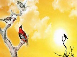 Chuyện về 3 chú chim - Yếu tố nào quyết định vị trí của chúng ta trong cuộc đời - Ảnh minh hoạ